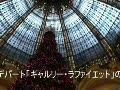 パリ最大のデパートのクリスマス・ツリー